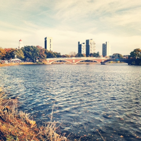 charles river cambridge