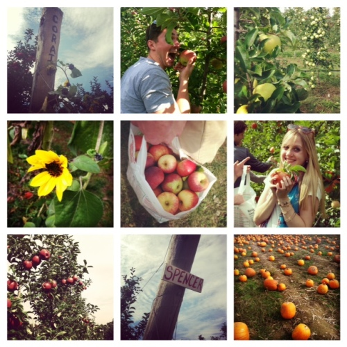 fall instagram collage