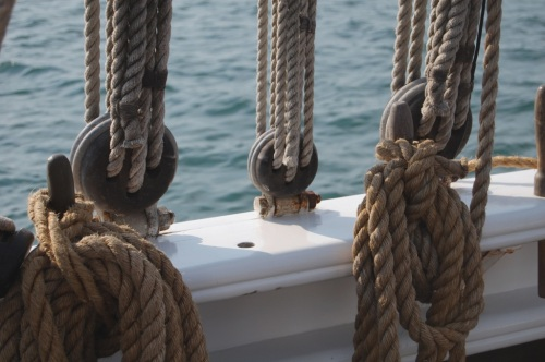 nautical ropes photography