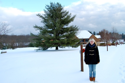 Christmas in the Poconos