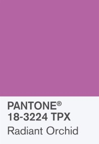 Pantone Color of the Year Swatch; Radiant Orchid