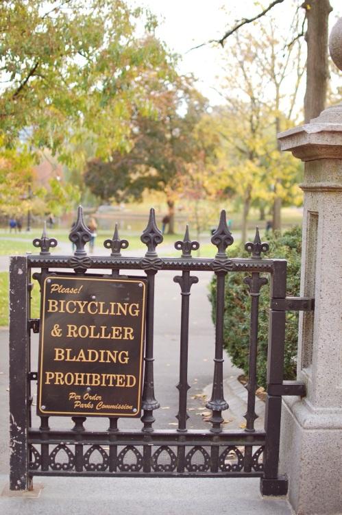 Boston Public Garden Photography