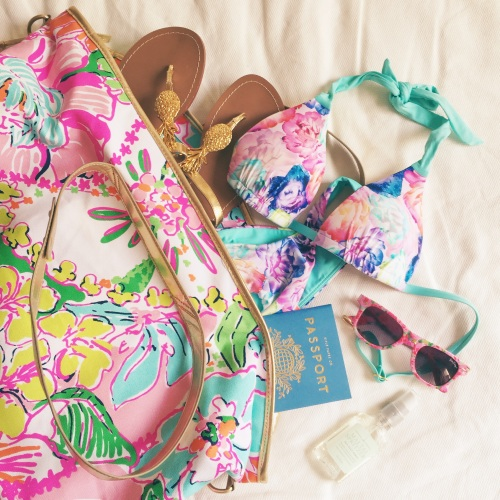Lilly for Target Nosie Posey Bag